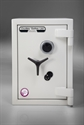 Picture for category Eurograde 4 Safes